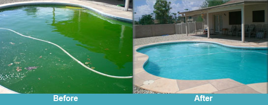 Swimming pool cleaning carolina pool services and supplies for Swimming pool cleaning chemicals list